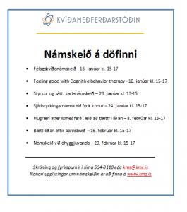 augl-fyrstu-nmks-v17